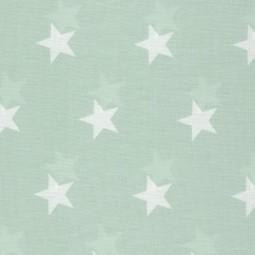 weiße Sterne auf Mint