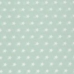 kleine weiße Sterne auf Mint