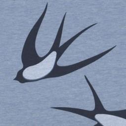 Jersey blaue Schwalben