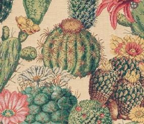 Gobelin Kaktus tropic