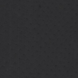 Plumetis Schwarzblau